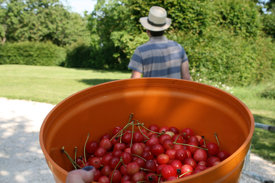 Home in Burgundy - my parent's house - Cherry picking www.TheFloShow.com