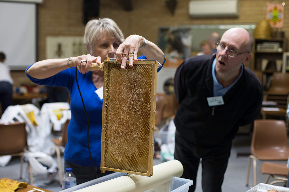Bee course with the Illawarra Beekeepers Association - Cutting the wax on www.TheFloShow.com
