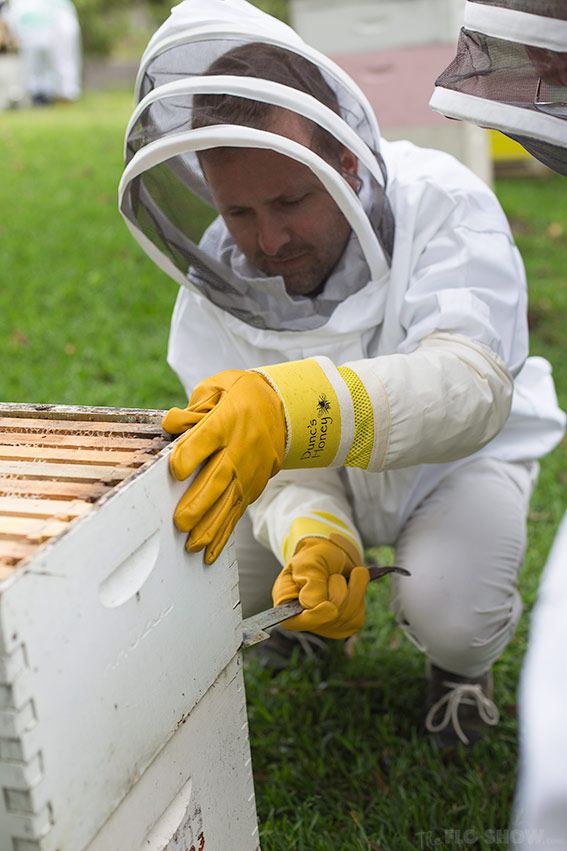 Bee course with the Illawarra Beekeepers Association - Wendell working hard - on www.TheFloShow.com