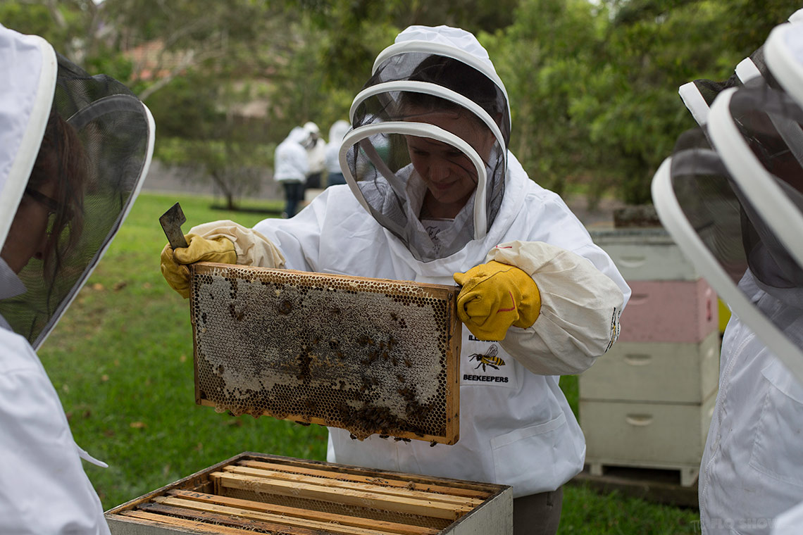 Bee course with the Illawarra Beekeepers Association - learn the right gesture - on www.TheFloShow.com