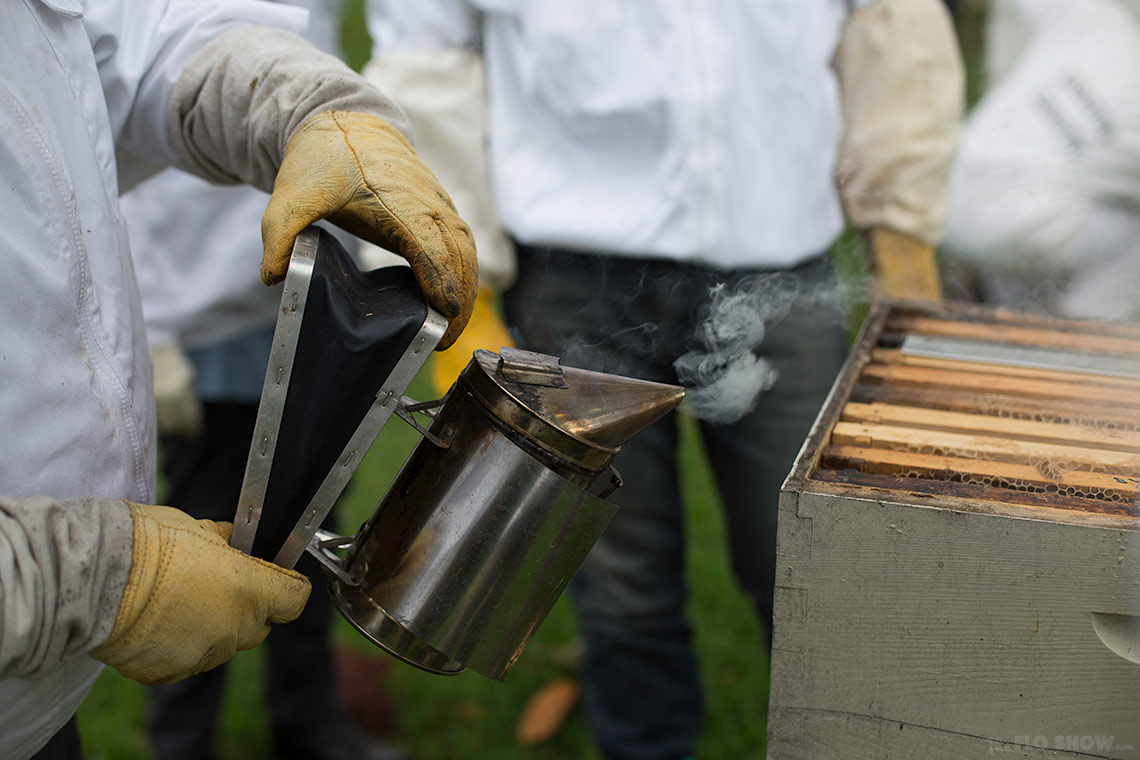 Bee course with the Illawarra Beekeepers Association - smoke it on www.TheFloShow.com