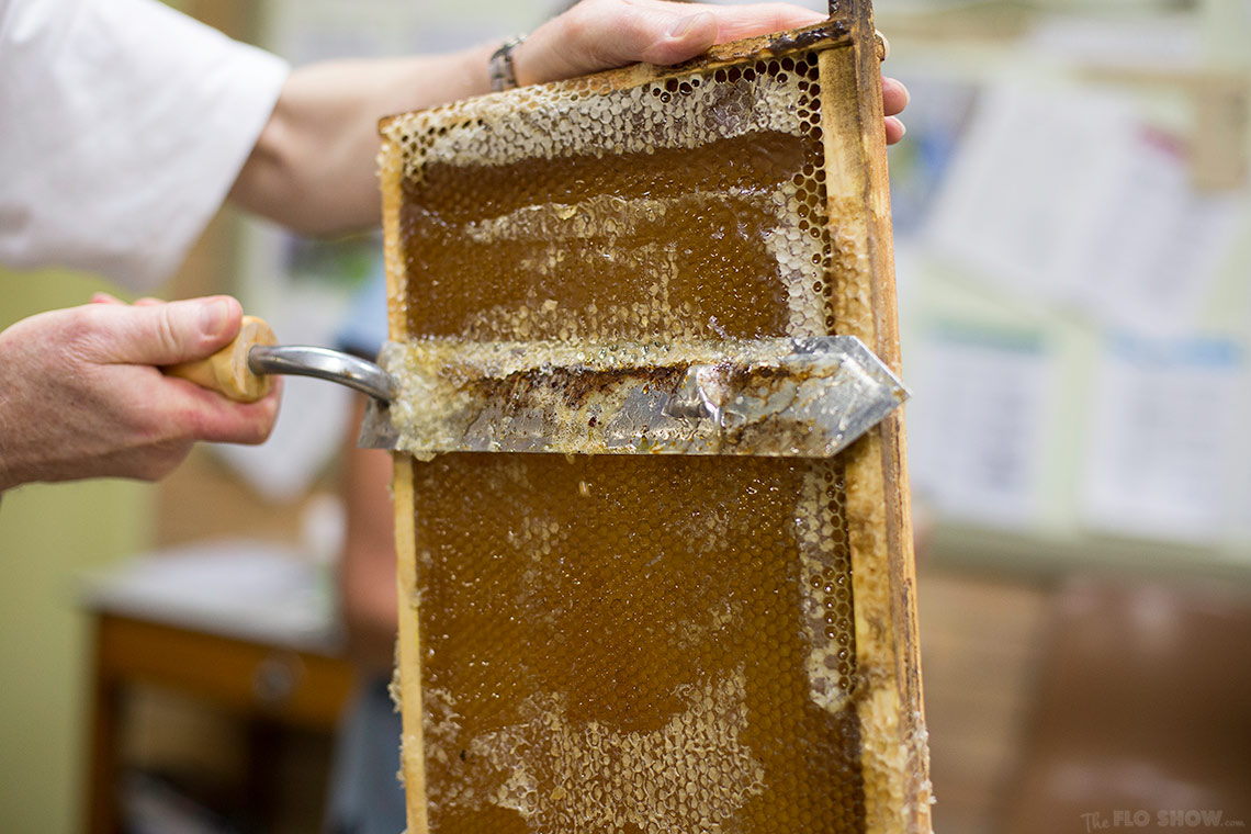 Bee course with the Illawarra Beekeepers Association - you should smell this... www.TheFloShow.com